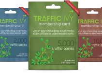 Traffic Ivy Review – Why You Should Own This Brand Right Now?