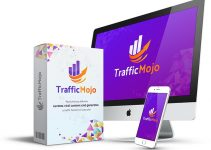 Traffic-Mojo-Review
