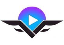 VidSting_logo