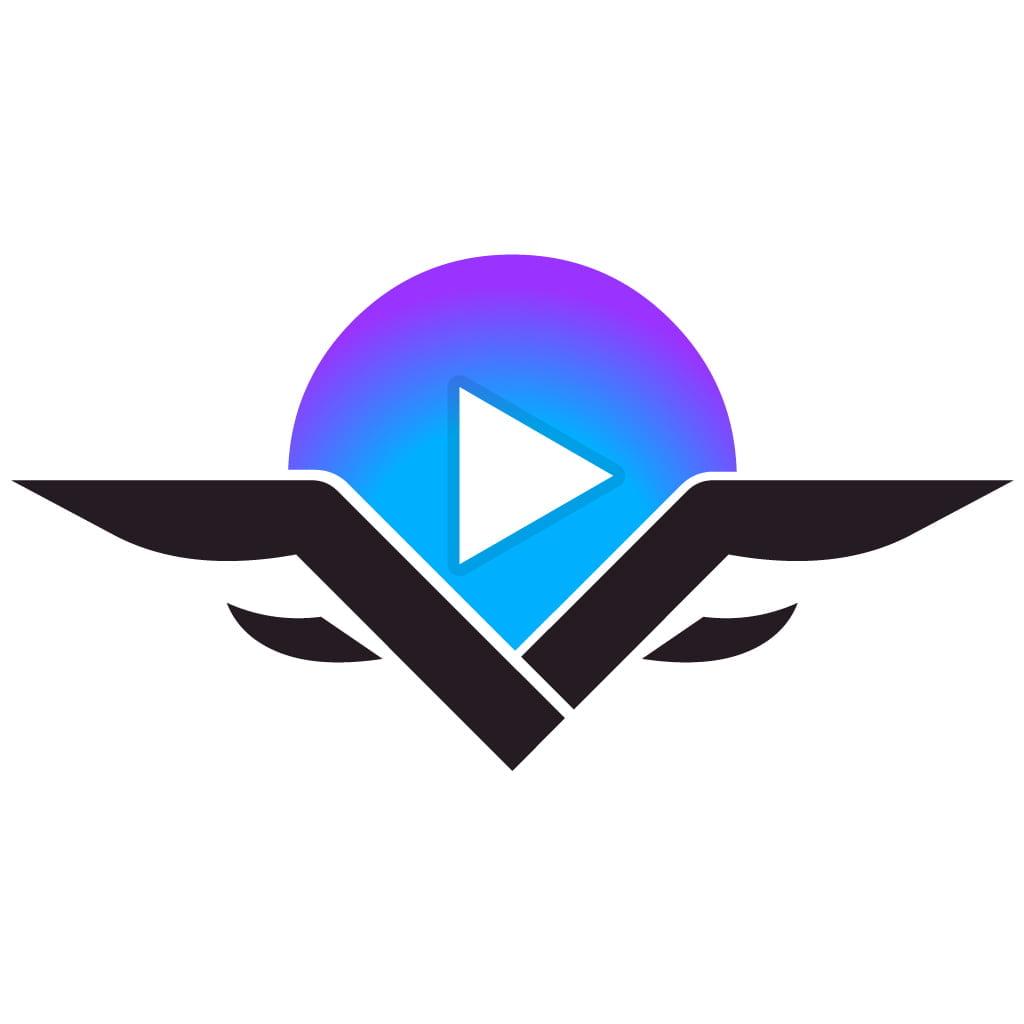 VidSting-Review
