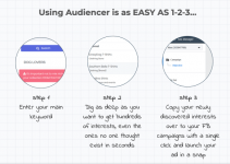 Audiencer-Review
