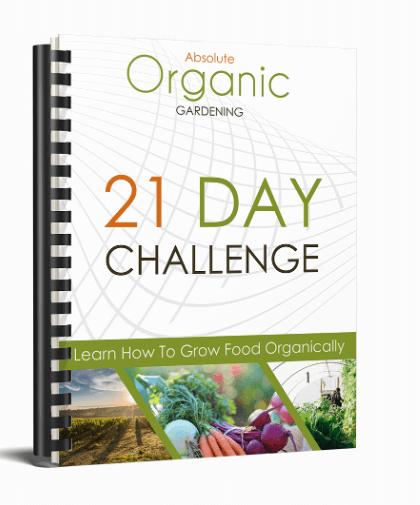 Absolute-Organic-Gardening-Review-Module2