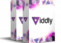 Viddly-Review