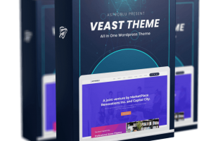 Veast-Theme-Review