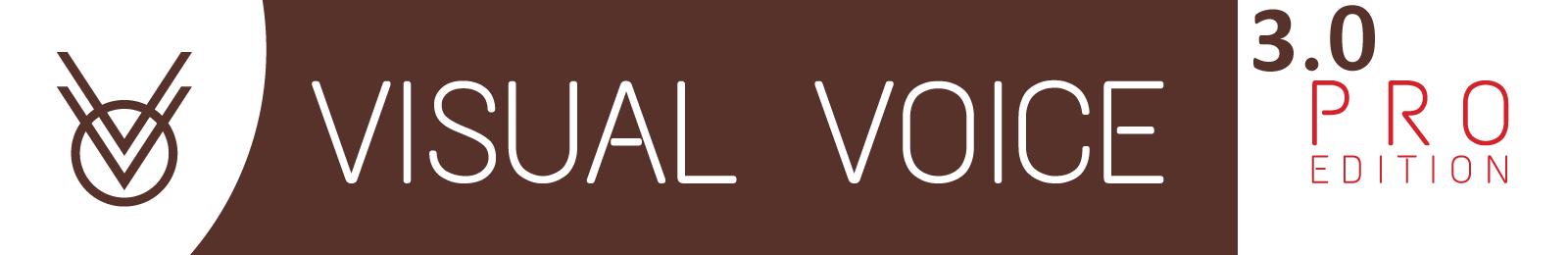 Visual-Voice-Pro-3-Logo