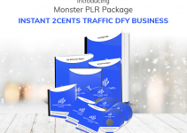 [PLR] Instant 2cents Traffic Dfy Business Review – Need My Help With Ecommerce Conversion?