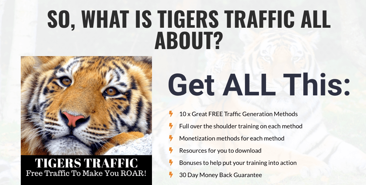 Tigers-Traffic-Review-1
