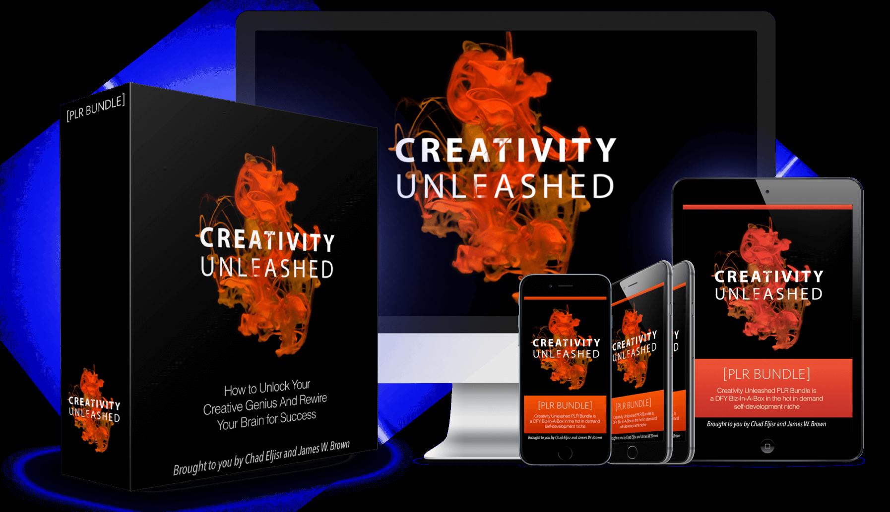 Creativity-Unleashed-PLR-Bundle-Review
