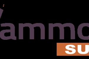 Hammock-Suite-Review