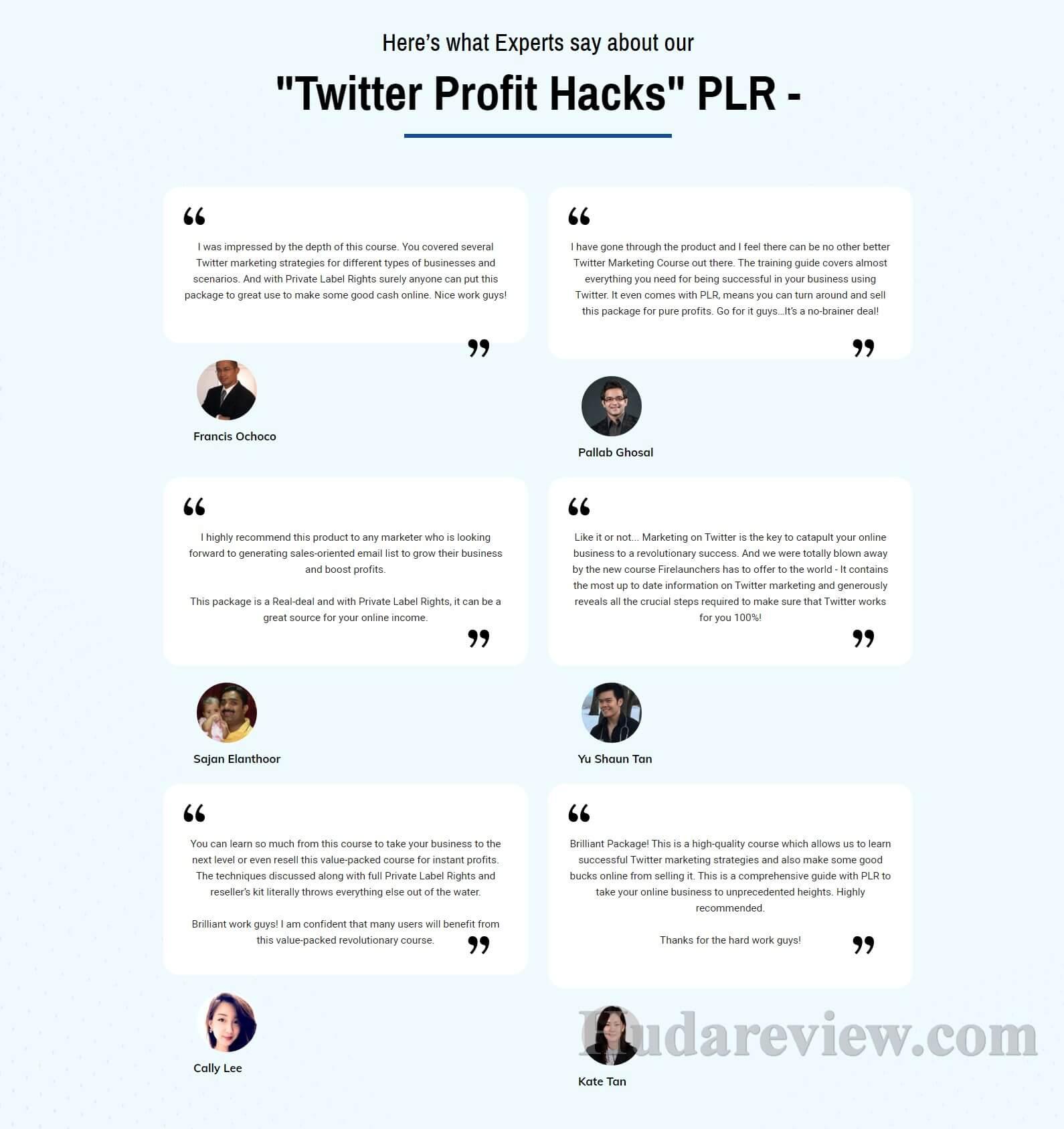 Twitter-Profit-Hacks-Comment1