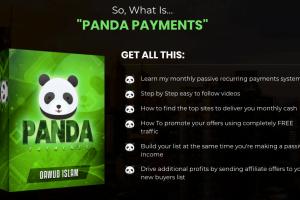 Panda-Payments-3