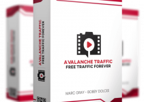avalanche-traffic-review
