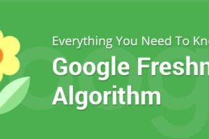 Google Freshness Algorithm What SEOer Need to Know
