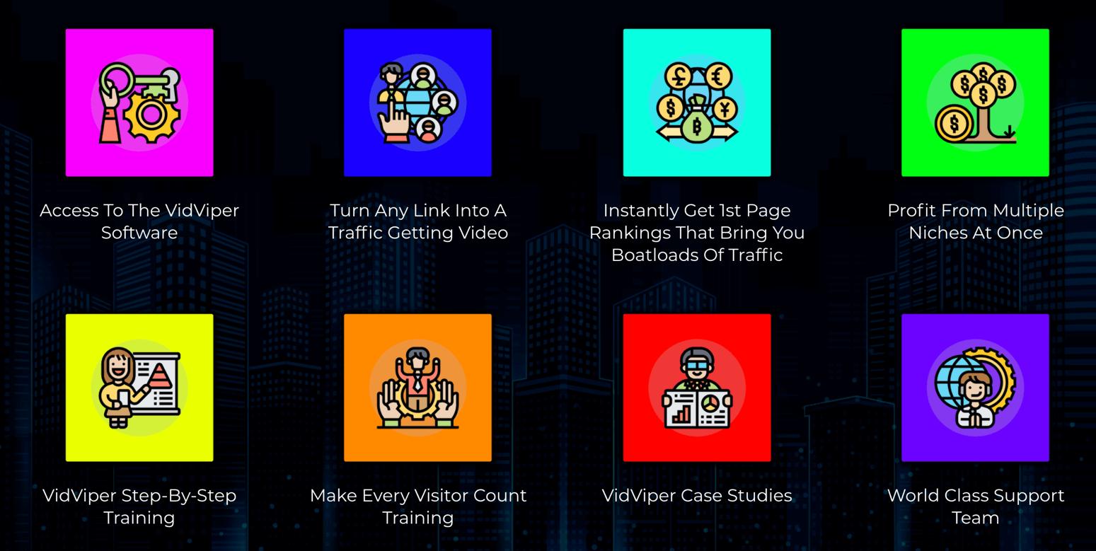 VidViper-Features