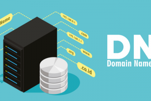 What Is DNS? Usage And Common DNS Server Types