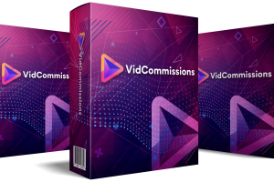 VidCommissions-Review