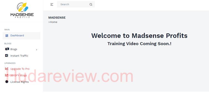 Madsense-Profits-Step-0