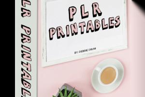 Printables PLR Review & Bonus – Check This PLR Package